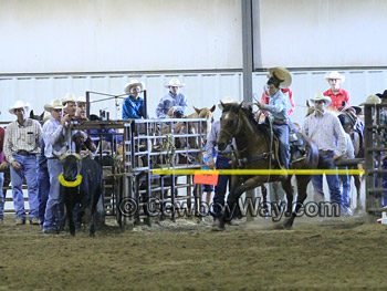 Team roping barrier