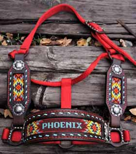 A custom beaded horse halter