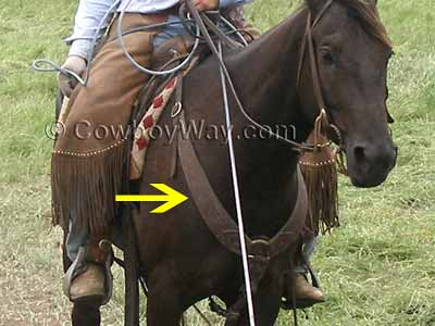 A Western breast collar