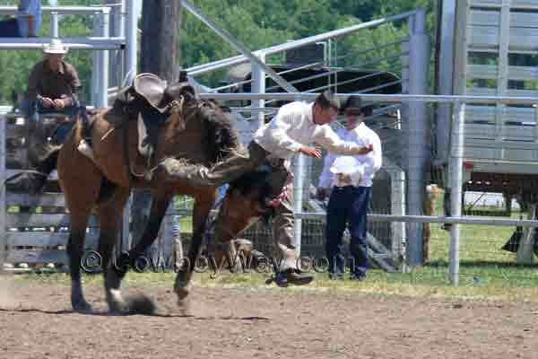 A bronc rider straddles the bronc's neck