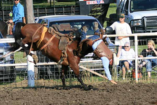 A bronc rider getting bucked off