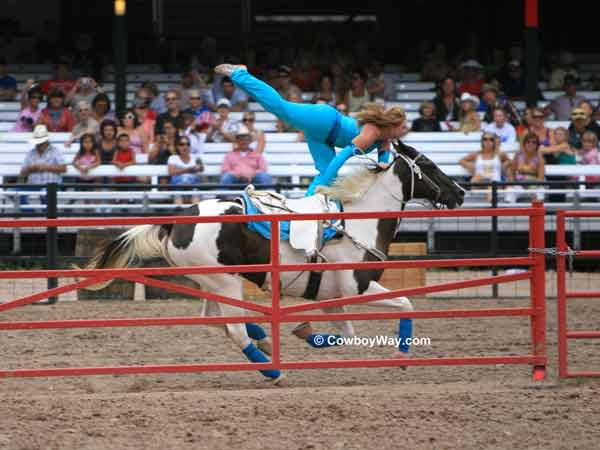 A trick rider at the Cheyenne Frontier  Days Rodeo