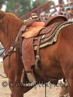A calf roping saddle with front and back cinch