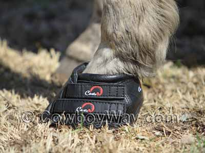 A Cavallo brand Simple boot on a horse