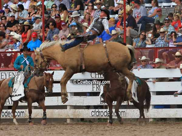 Bronc rider Dale Stoller and bronc Dust Devil