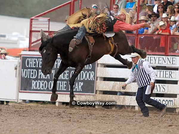 A bronc rider and his bronc, high off the ground