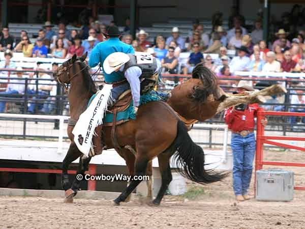 Cheyenne Frontier Days Saddle Bronc Riding Photos Page 1