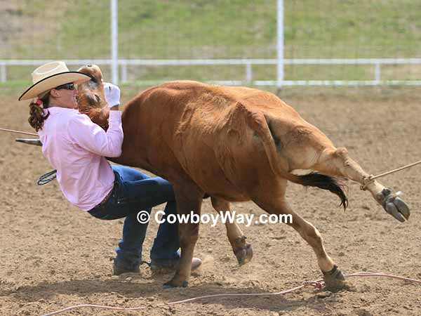 Cowgirl mugging a steer
