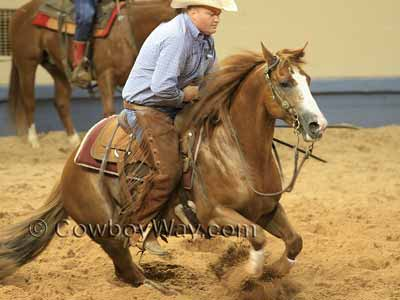 Cutting Horse News And How Cutting Horses Are Judged