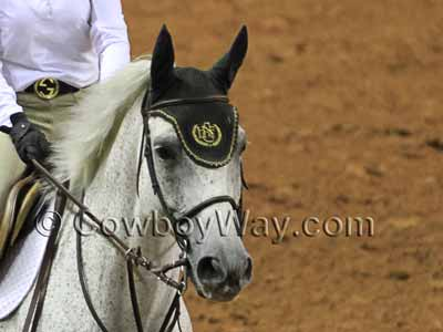 Custom horse ear bonnet with monogram