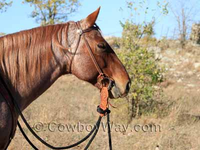 A headstall with a snaffle bit