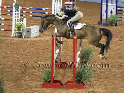 A brown horse clearing an oxer jump