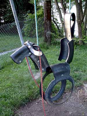 A horse tire swing