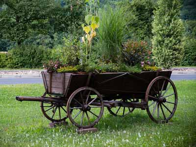 A formerly horse drawn wagon being used as a planter