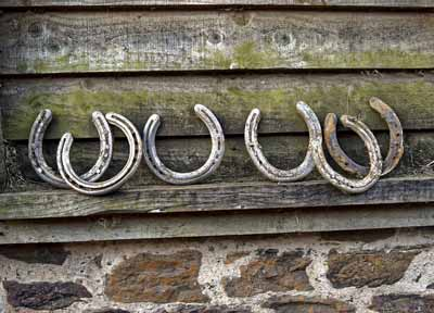 Used horseshoes with a wood background