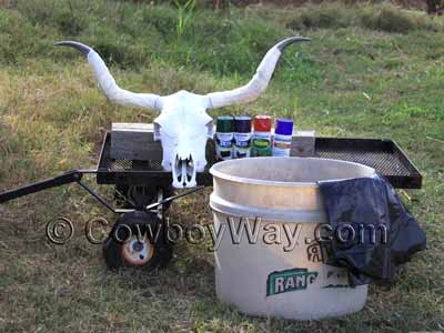Cow skull, spray paint, and hydro dipping tub
