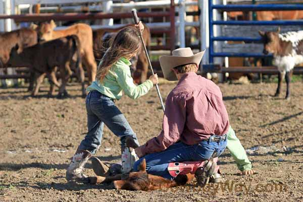 Calf branding in a junior ranch rodeo