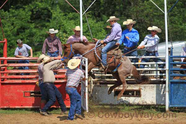 Junior Ranch Bronc Riding, 05-05-12 - Photo 04