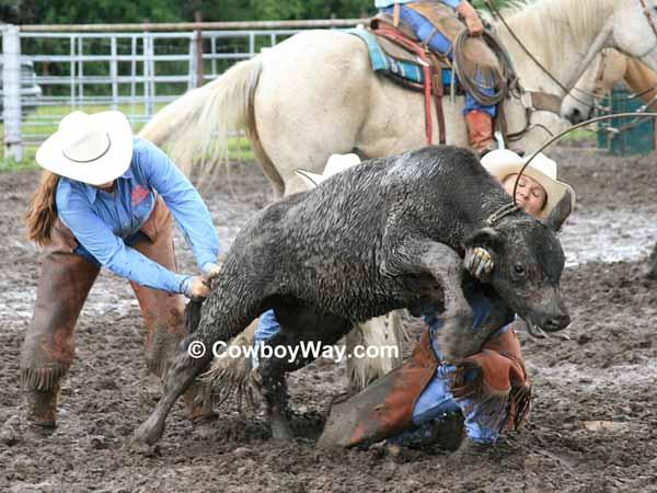 A calf and two cowgirls in the mud