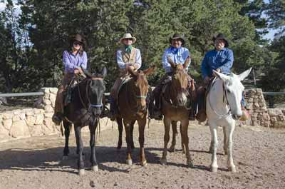 Wranglers riding mules.