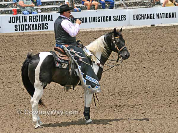 A Paint horse being ridden by a rodeo announcer