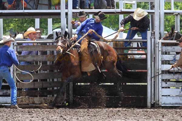 Ranch Bronc Riding, Moline - Photo 04