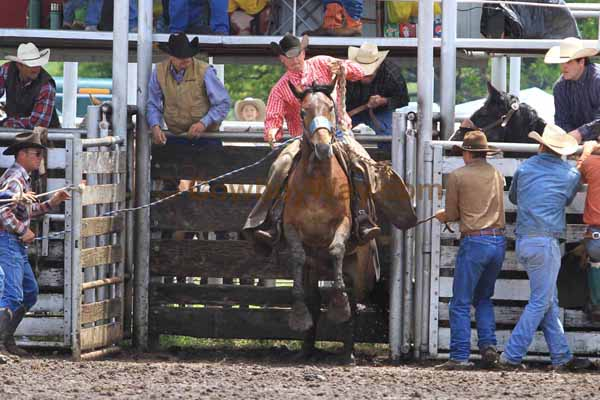 Ranch Bronc Riding, Moline - Photo 08