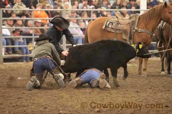 Ranch Rodeo, Equifest of Kansas, 02-11-12 - Photo 08