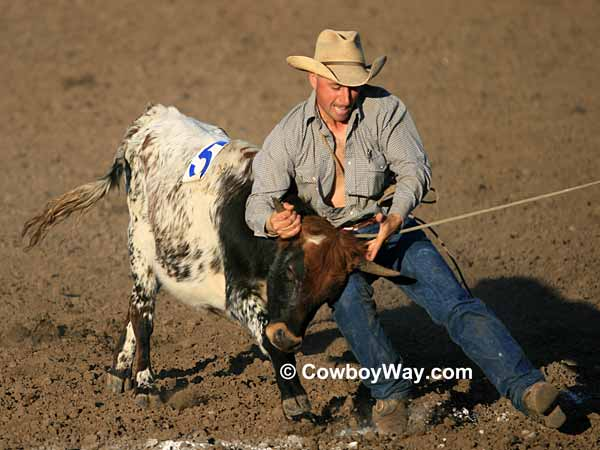 A ranch rodeo cowboy moves in to mug a steer
