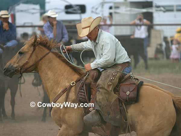 A roper catches a calf in the calf branding