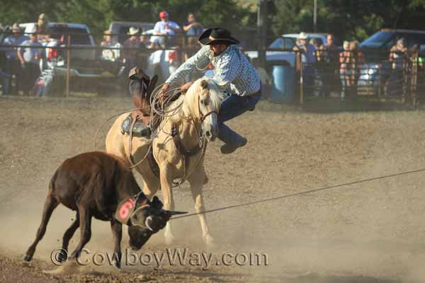 A cowboy jumps off of a palomino horse to help his teammates