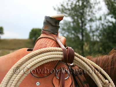 Rope strap on a saddle holding a rope