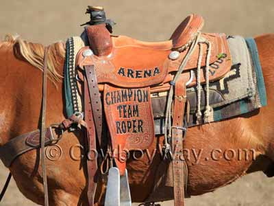 A trophy roping saddle