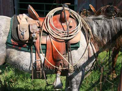 A ranch / roping saddle on a gray horse