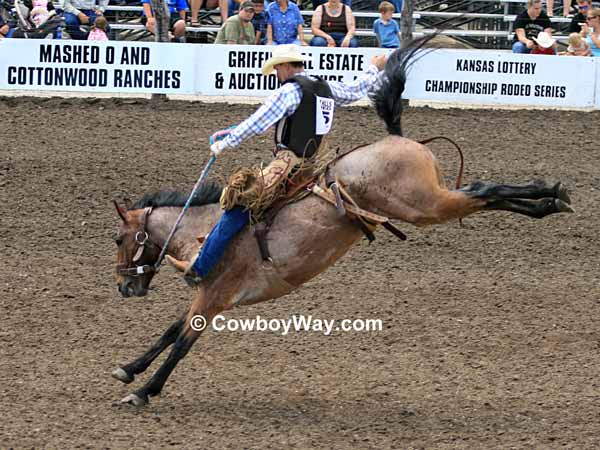 Saddle bronc rider making a ride
