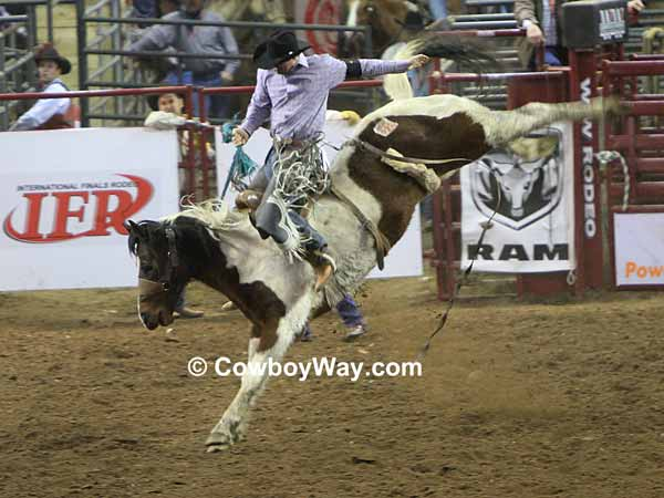 A paint bronc and bronc rider