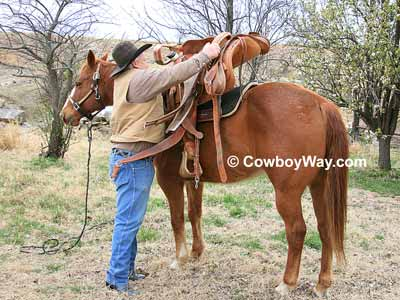 Saddle a horse by gently setting the saddle on its back