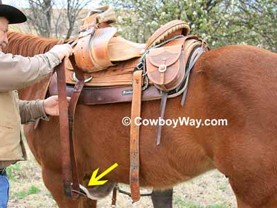 How to saddle a horse: Snug the saddle to the horse