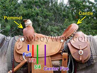 A roping saddle illustrated with saddle rigging positions