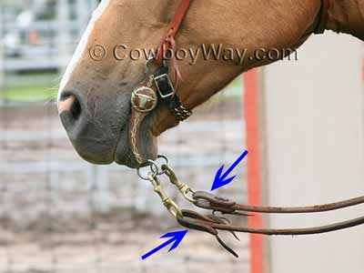 Slobber straps with split reins