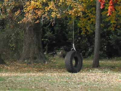 A tire swing that is not a horse