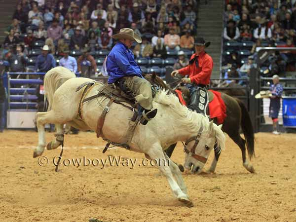 A ranch bronc rider on a palomino bronc