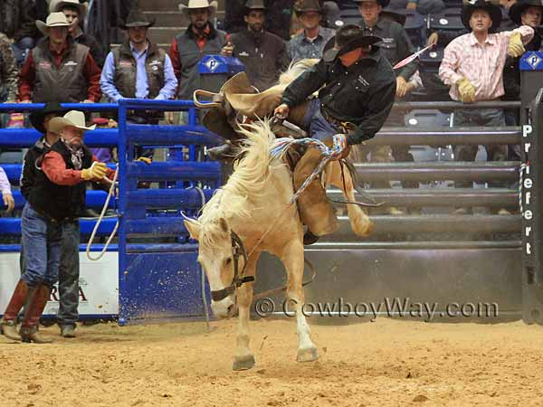 Kyle McCord appeard to be getting bucked off