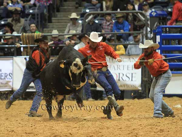 In a ranch rodeo, three men try to stop a cow