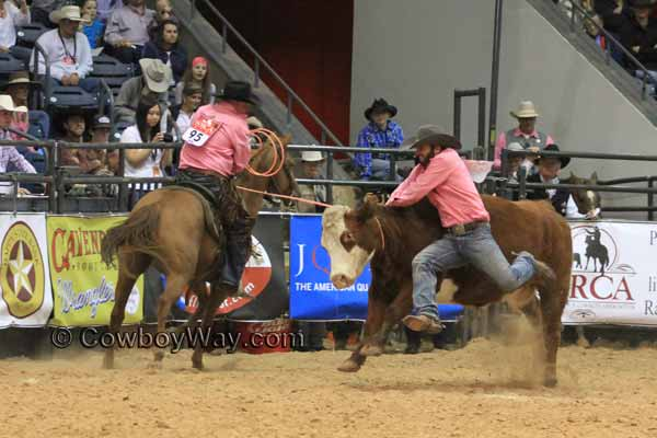 WRCA Ranch Rodeo, Wild Cow Milking, 11-07-14 SMR Ranch and Deseret Cattle