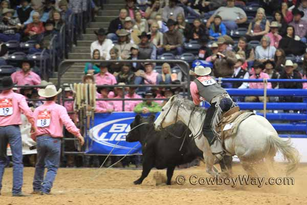 World Championship Ranch Rodeo (WCRR) wild cow milking - Beachner Brothers Livestock