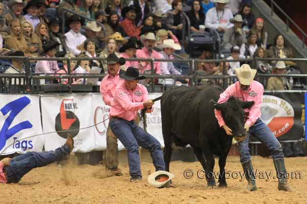 World Championship Ranch Rodeo (WCRR) wild cow milking