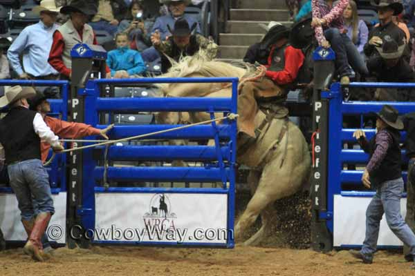 Ty Swiler riding a ranch bronc at the WRCA Ranch Rodeo Finals