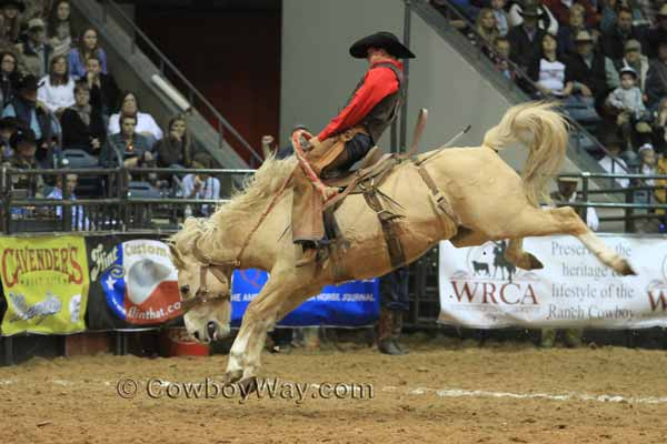 Ty Swiler from Beachner Brothers Livestock rides a ranch bronc