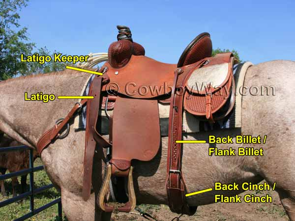Saddle info with continued illustrated information of parts of a Western saddle